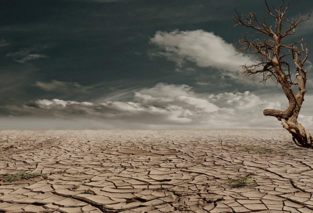 Apocalypse, Adpocalypse, Yermo