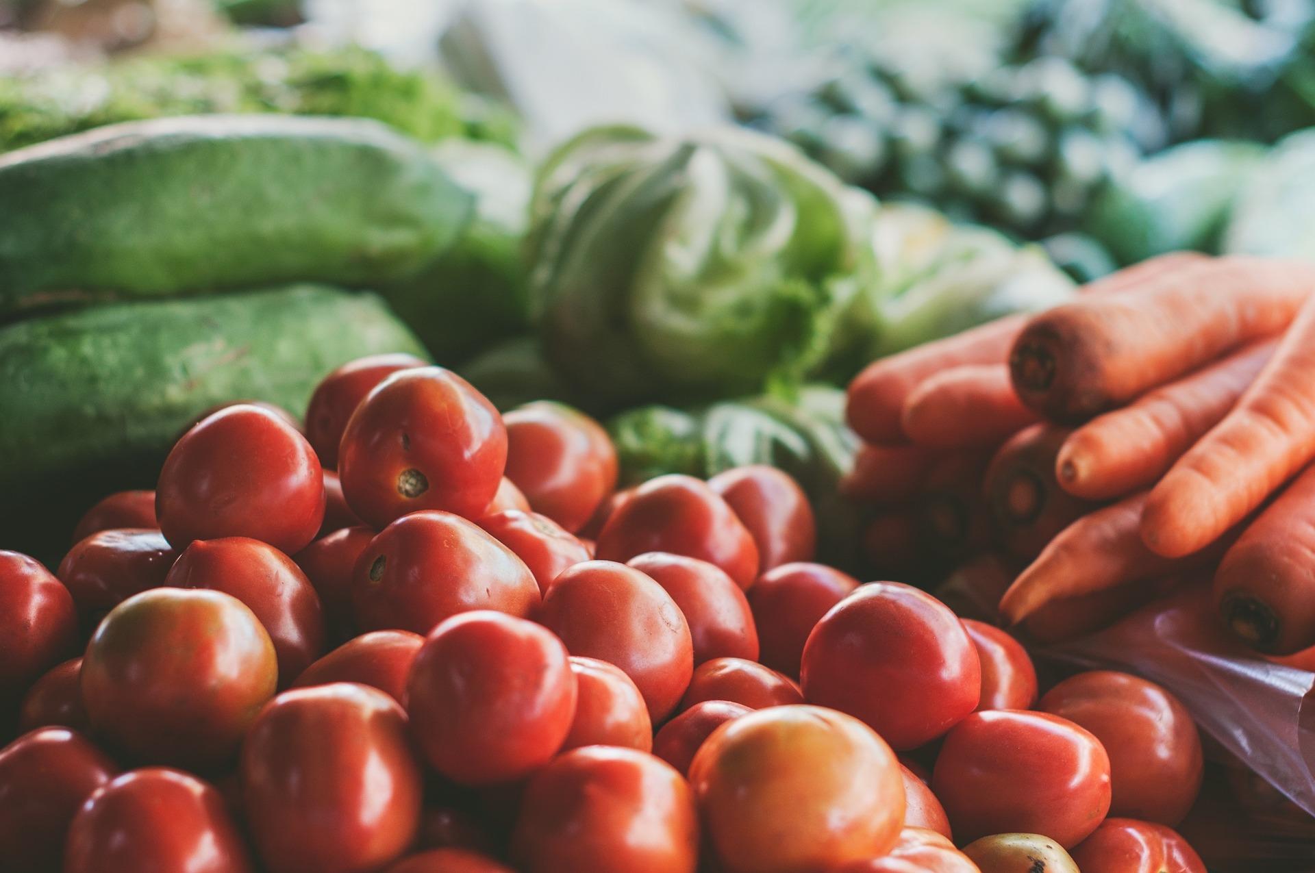 Sector Agroalimentario. Esencial en la actualidad de la economía española